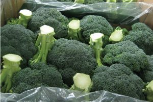StePac's packaging improves supply chain of vegetables
