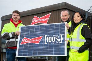 Budweiser to use 100% renewable energy