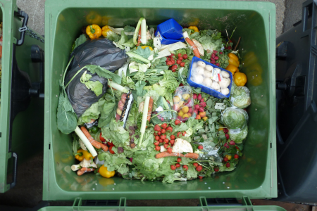 Research project promises 30% food waste reduction