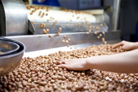 Hazelnut export increases production with Tomra sorter