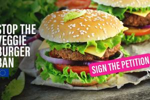 EU veggie 'burger' ban challenged across Europe