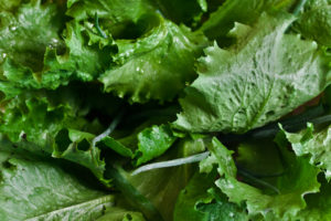 Salmonella warning over damaged salad leaves